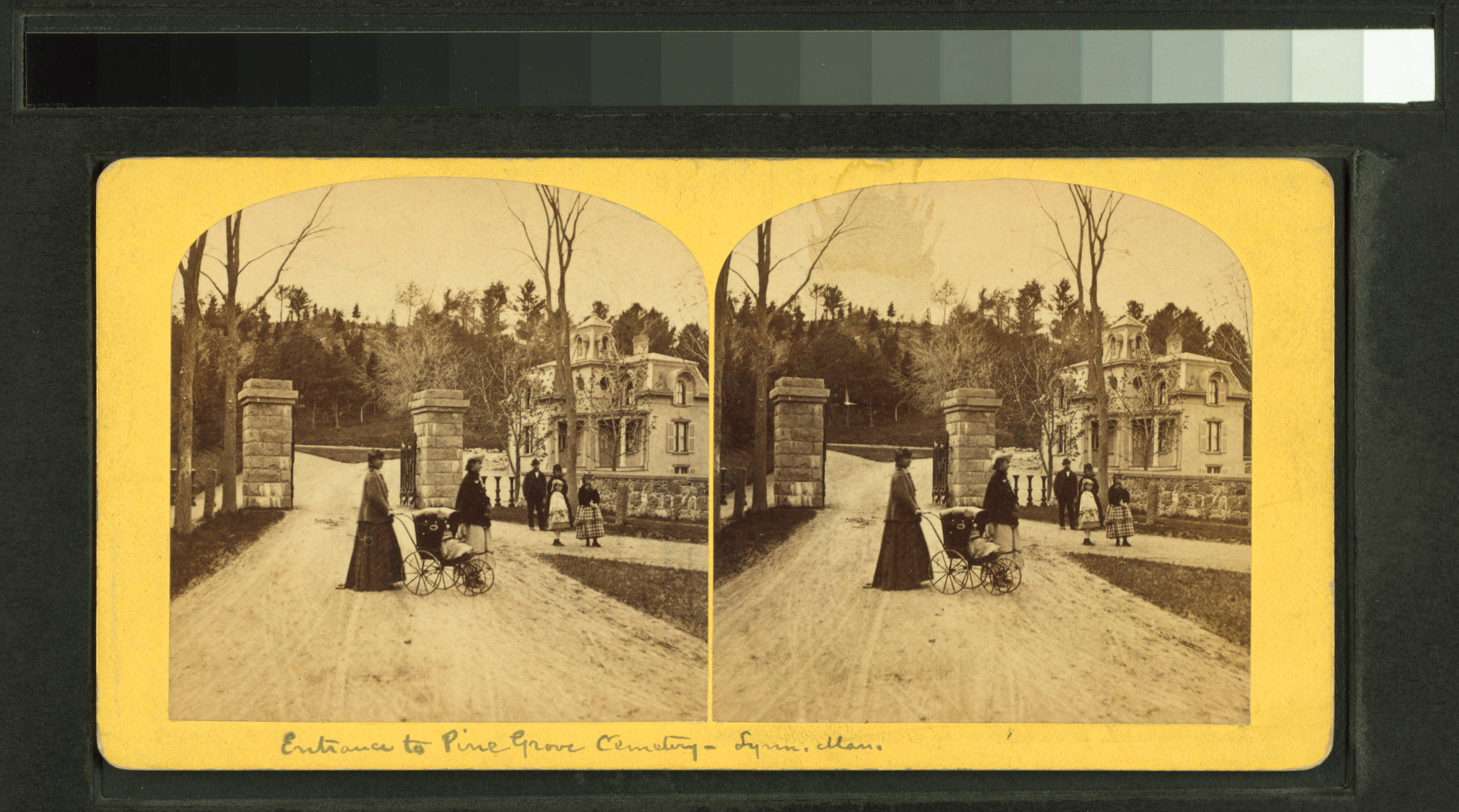 Vintage stereo card of a park, New York Public Library