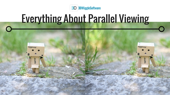 Parallel_Viewing_stereogram_3dwiggle